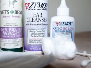 The products and tools used to take charge of stinky ears and chronic ear infections